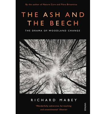 The Ash and the Beech: The Drama of Woodland Change