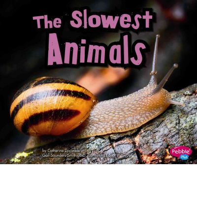 The Slowest Animals