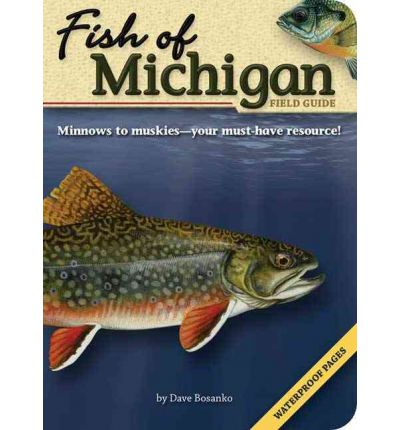 Fish of michigan field guide dave bosanko 9781591931935 for Fish in michigan