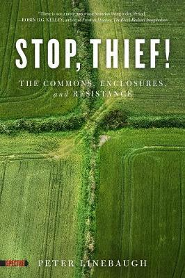 Stop, Thief!: The Commons, Enclosures, and Resistance