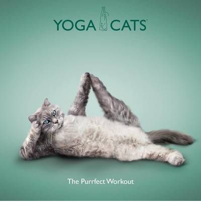 Yoga Cats: The Purrfect Workout