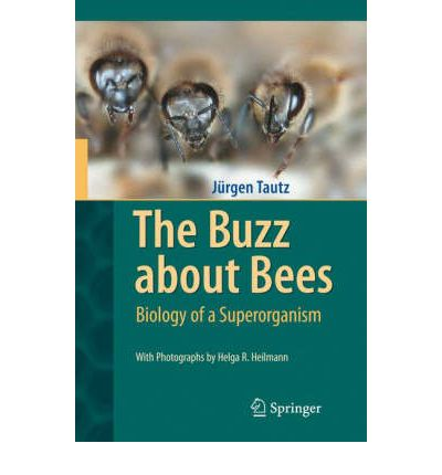 The Buzz About Bees: Biology of a Superorganism