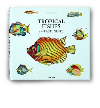 Samuel Fallours: Tropical Fishes of the East Indies