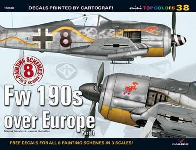 Fw 190s Over Europe: Pt II