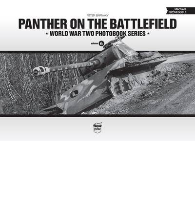 Panther on the Battlefield: Volume 6