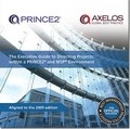 The Executive Guide to Directing Projects 2009: Within a PRINCE2 and MSP Environment