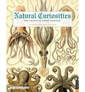 Natural Curiosities: The Prints of Ernst Haeckel: 12 Poster Calendars for 2015