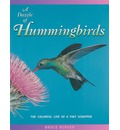A Dazzle of Hummingbirds: The Colorful Life of a Tiny Scrapper