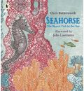 Seahorse: The Shyest Fish in the Sea