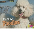 All about Poodles