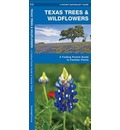 Texas Trees & Wildflowers