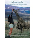 Mammals in north-east Highlands
