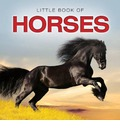 Little Book of Horses