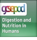 Organ Systems: Digestion and Nutrition in Humans