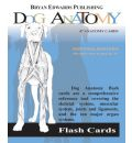 Dog Anatomy Flash Cards
