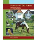 Flowers of the Forest: Plants and People in the New Forest National Park