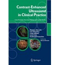Contrast-Enhanced Ultrasound in Clinical Practice: Liver, Prostate, Pancreas, Kidney and Lymph Nodes