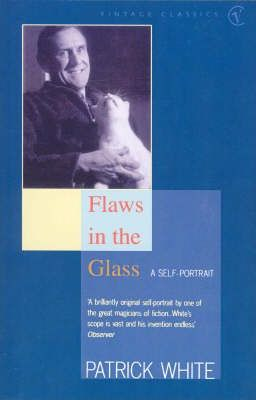 Flaws in the Glass : A Self Portrait