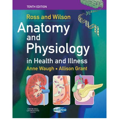 Exelent Ross And Wilson Anatomy And Physiology 11th Edition Free ...