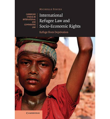 Economic and Social Rights