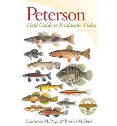 Peterson field guide to freshwater fishes of north america for North american freshwater fish