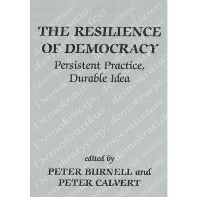 the durability of democracy in the We view the democracy, human rights, and governance (drg) sector not in isolation but as a critical framework in which all aspects of development must advance together.