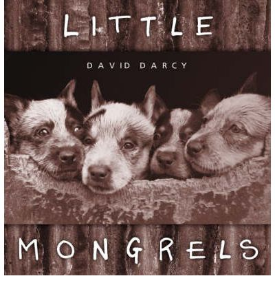Little Mongrels