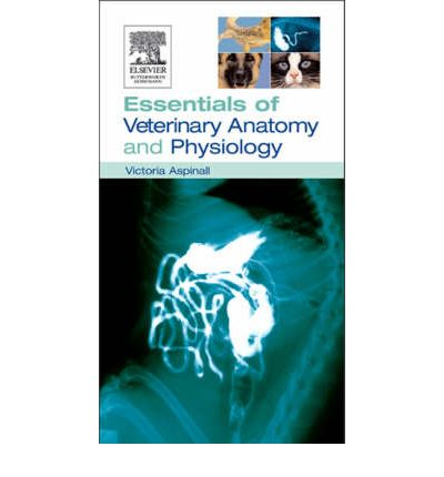 essentials of medical physiology Sembulingam physiology latest edition prema sembulingam essentials of medical physiology 7th edition pdf guyton physiology pdf download sembulingam physiology for dental students k sembulingam download pdf k sembulingam physiology human physiology book free download k sembulingam essentials of physiology e book download k sembulingam essentials of physiology e book download physiology is a .