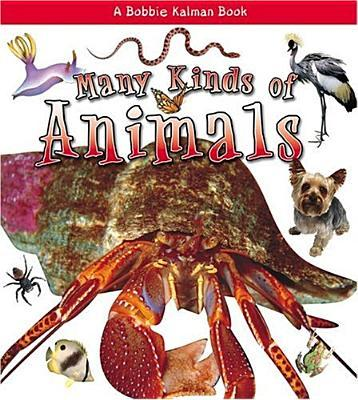 Many Kinds of Animals  What Kind of Animal Is It   by Aloian, Molly; Kalman, ...