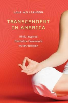 Transcendent in America : Hindu-Inspired Meditation Movements as New Religion