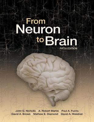 Read from neuron to brain | pdf books.