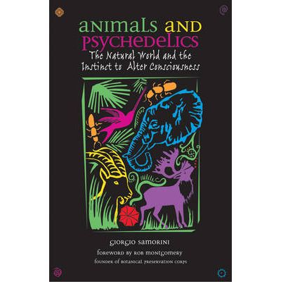 Animals and Psychedelics : The Natural World and Its Instinct to Alter Consciousness