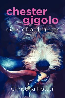 Dangers for Dogs, Diary of a Dog Rescuer