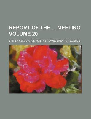 Report of the Meeting Volume 20