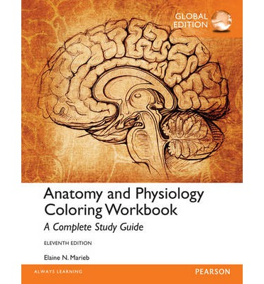 anatomy and physiology coloring workbook a complete study guide global edition elaine n marieb 9781292061290 - Anatomy And Physiology Coloring Book