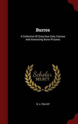 Burros : A Collection of Sixty-Four Cute, Curious and Interesting Burro Pictures