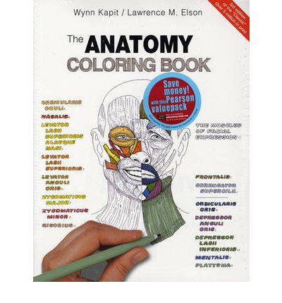 human anatomy and physiology coloring book | Coloring Pages