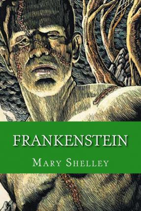 a description of the story of frankenstein by mary shelley Check out mary shelley's frankenstein video sparknote: quick and easy frankenstein synopsis, analysis, and discussion of major characters and themes in the novel for more frankenstein resources.