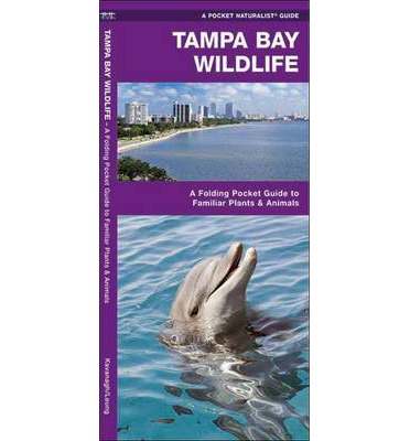 Tampa Bay Wildlife : A Folding Pocket Guide to Familiar Plants and Animals