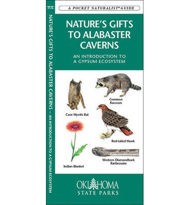 Nature's Gifts to Alabaster Caverns : An Introduction to a Gypsum Ecosystem