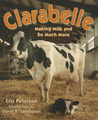 Clarabelle : Making Milk and So Much More