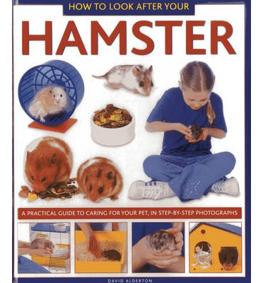 how to look after a hamster However, if your child's interests and expectations wane after that initial exciting trip to the pet store, even a low-maintenance pet like a hamster can become a chore.