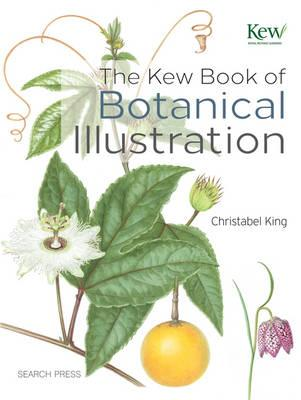 The Kew Book Of Botanical Illustration Christabel King