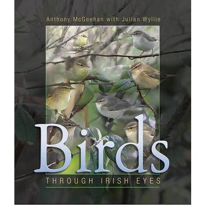 Birds : Through Irish Eyes