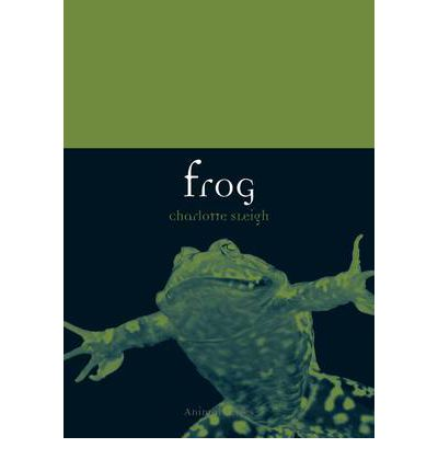 Frog  Animal   Paperback  by Sleigh, Charlotte