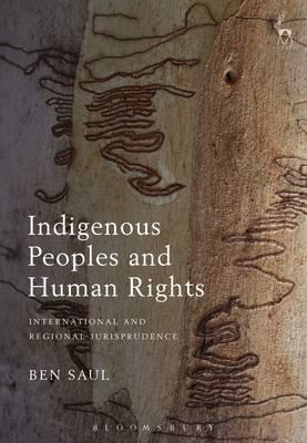 indigenous human rights an overview of Click download or read online button to get indigenous human rights  this handbook will be a comprehensive interdisciplinary overview of indigenous peoples' rights.