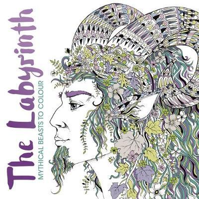 The Creative Therapy Colouring Book Hannah Davies 9781782433002