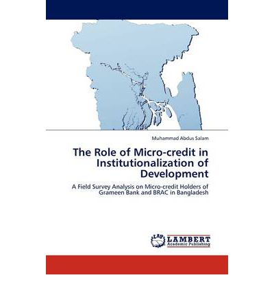the role of micro credit to rural Rural and microfinance institutions: regulatory and supervisory issues 188 india ltd, a micro-credit institution serving the rural poor in india the experiences of these mfis point toward the possibilities of adaptation and replication by other mfis.