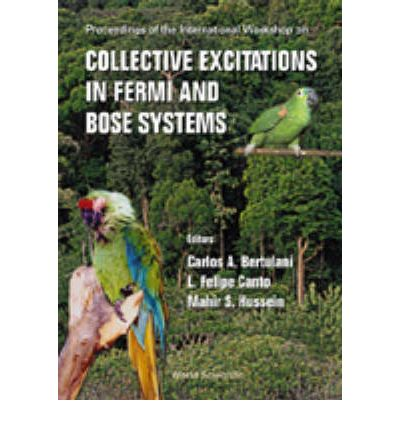 Collective Excitations in Fermi and Bose Systems : Proceedings of the International Workshop, Serra Negra, Sao Paulo, Brazil 14-17 September 1998