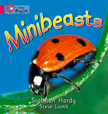 Minibeasts: Pink A/Band 01a